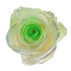 Avalanche Bling Bling Green Rose