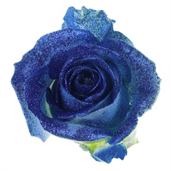 Avalanche Crystal Look Blue Rose